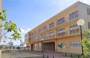 e0c55c4c233 Instituto Piaget do Brasil - Site Oficial do Instituto Piaget