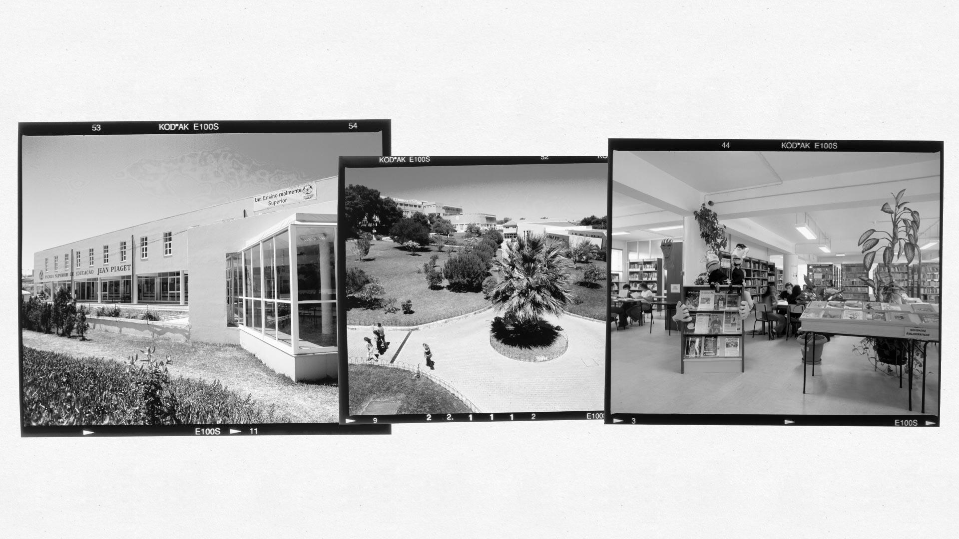 Escola Superior de Educação de Almada comemora 30 anos