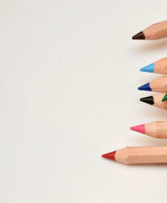 Flexibilidade Curricular – Perspetivas Práticas