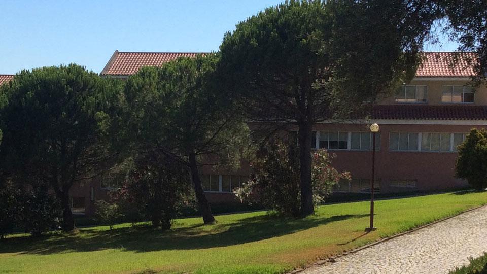 Centro Global de Formação e Treino Jean Piaget